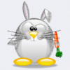bunny penguin