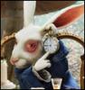 Alice in the Wonderland 2010